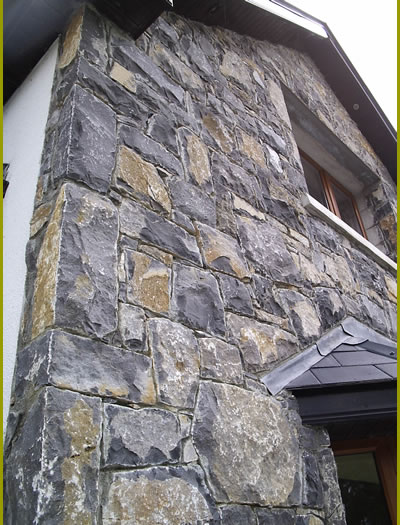 Stone.Cladding.Light.Limestone1.400.by.525